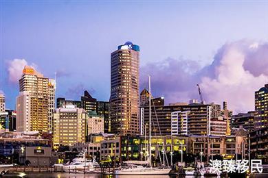 移民新西兰去哪座城市,看看不同城市的就业增长现状再决定!