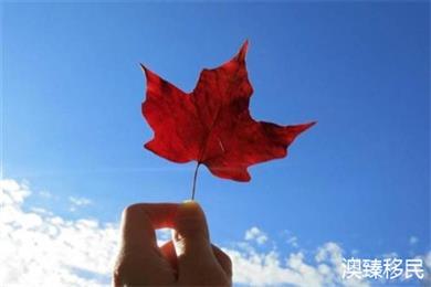 加拿大BC省企业家移民发布新规,无语言移民将成为历史!