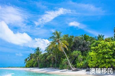 30天入籍,2天注册离岸公司,还有比瓦努阿图更给力的护照吗?
